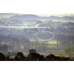 Paradou sous la brume