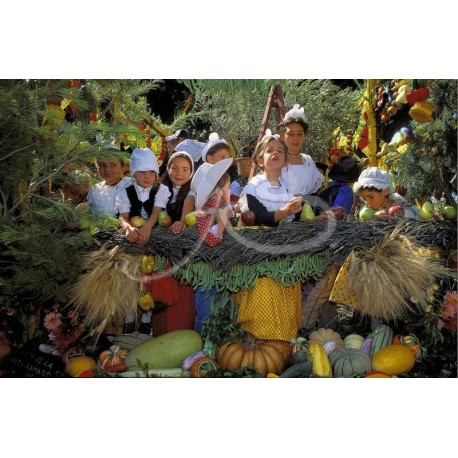 La carreto ramado de St-Rémy de Provence
