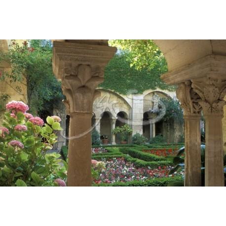 Le cloitre de St-Rémy de Provence