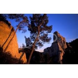 Falaise à St-Rémy de Provence