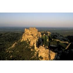Le chateau des Beaux de Provence