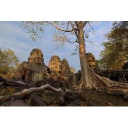 Angkor 2015_0441