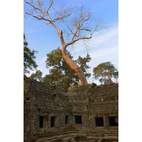 Angkor 2015_0489