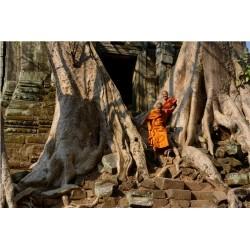 Angkor 2015_1381