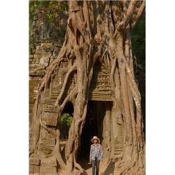 Angkor 2015_1891