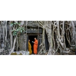 Angkor Ta Prohm pano_1651