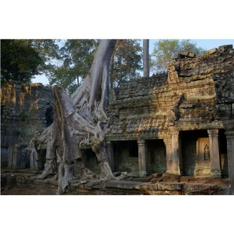 Angkor 2015_1832