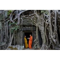Angkor 2015_1649