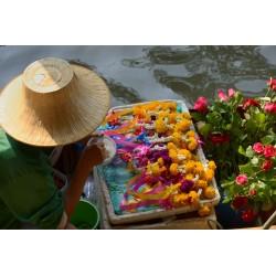Bangkok 2015_592