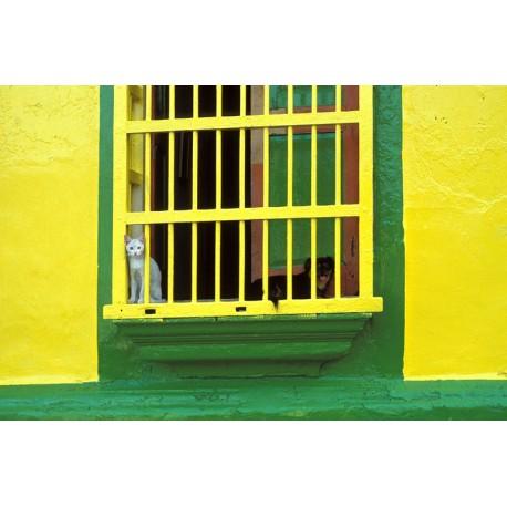 Vénézuela Maracaïbo quartier de Santa Lucia1029