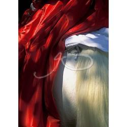 Panoramique d'une arlésienne amazone en robe rouge