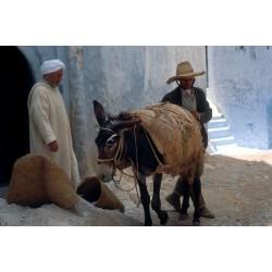 Maroc073