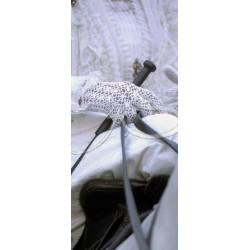 Panoramique de l'Arlésienne gant blanc