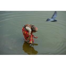 Inde14 -Pushkar_0184